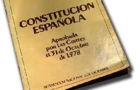 A-CONSTITUCIONALIDAD DE LOS SERVICIOS SOCIALES